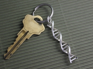 "DNA  Keychain Charm gift for science Large DNA Keychain size 2"" length, Solid Sterling Silver"